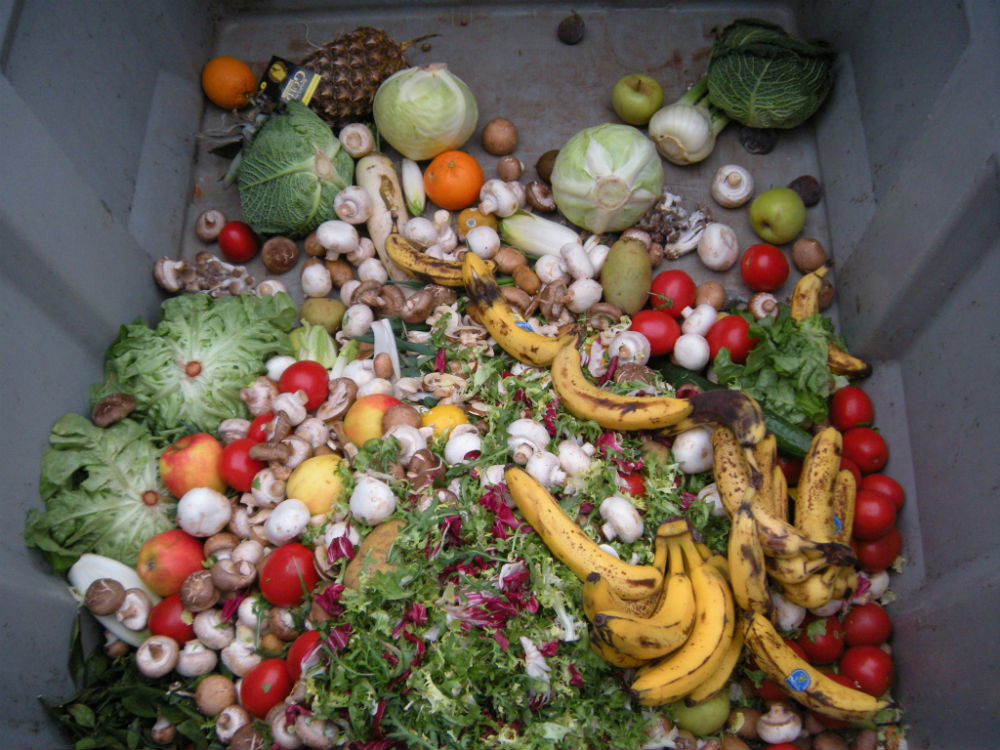 image of waste food